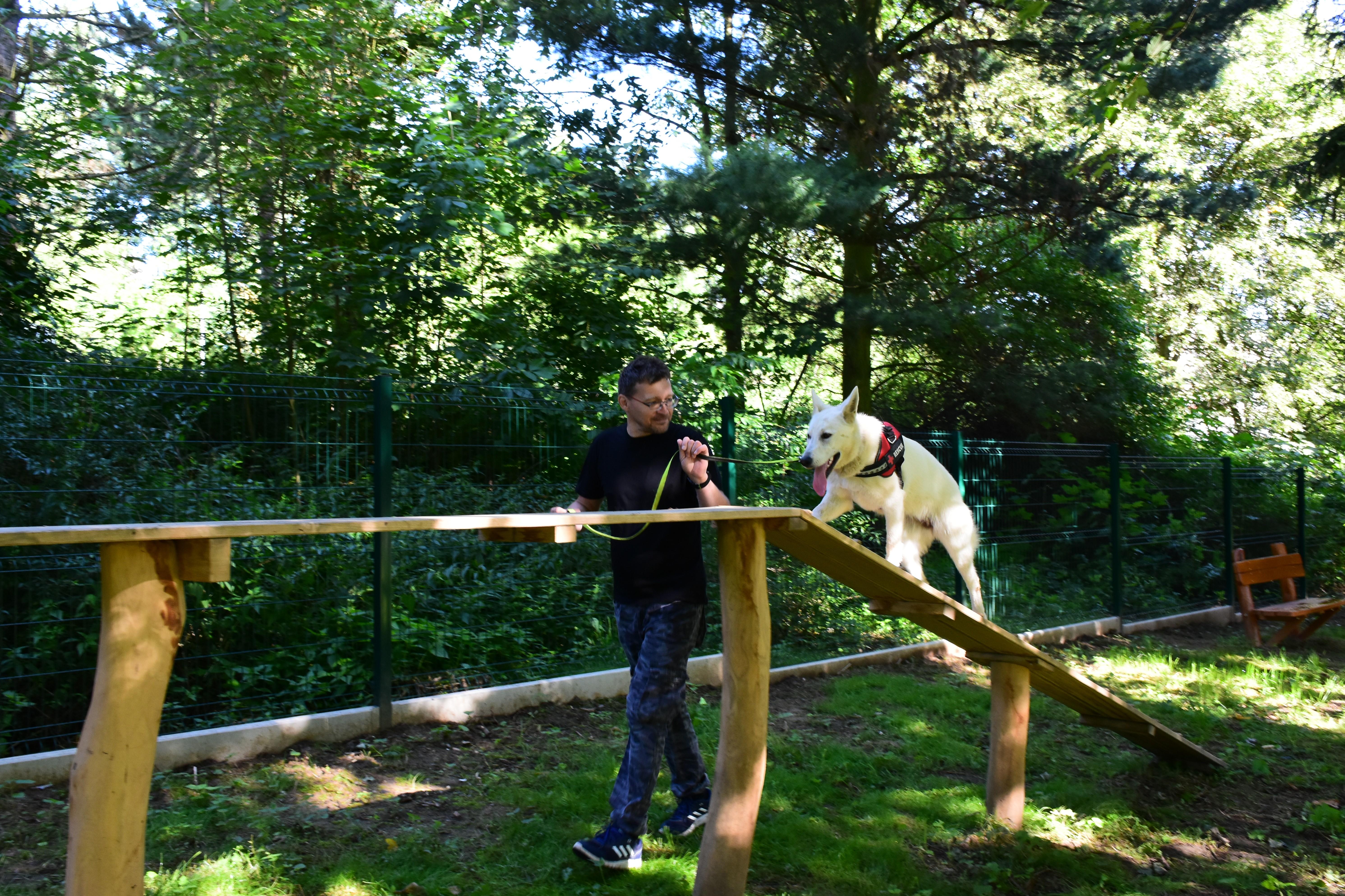 Agility psí park v Příbrami je otevřen pro veřejnost